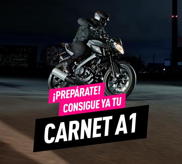 Carnet A1